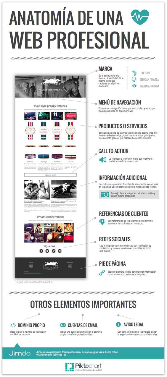 anatomia-pagina-web-profesional-infografia